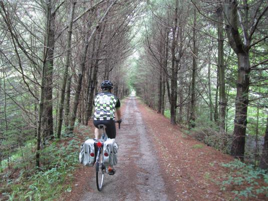 A rail trail outside of Shelburne