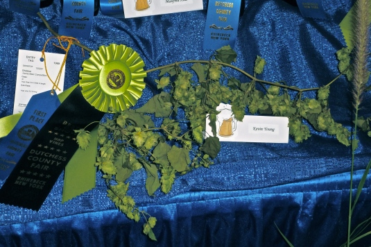 Kevin's Blue Ribbon Hops: Best in Show