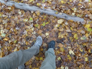 From fall ramblings